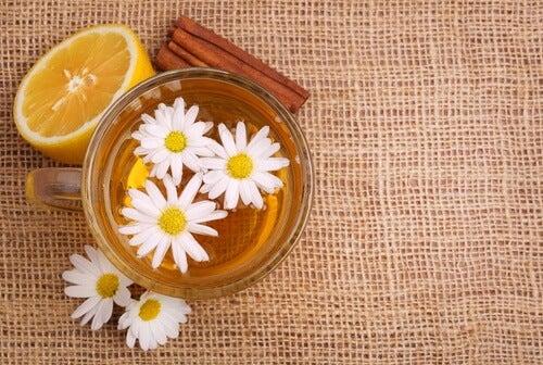 Bebida-de-camomila-e-canela para controlar a glicemia