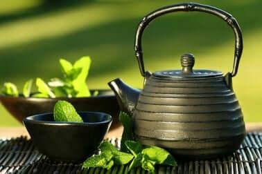 Por que devemos tomar chá de menta depois de comer?