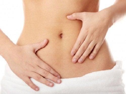 Prebióticos e probióticos ajudam ao funcionamento intestinal