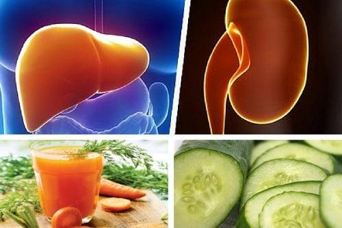 Suco de cenoura e pepino para fortalecer o fígado e os rins