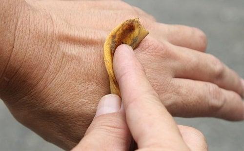 Usos alternativos para a casca de banana