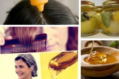 Mel de abelha:7 usos pouco conhecidos deste alimento