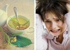 Infusões para diminuir a ansiedade e o nervosismo