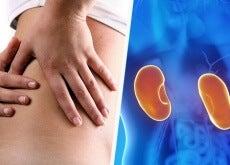 4 conselhos para evitar doenças renais