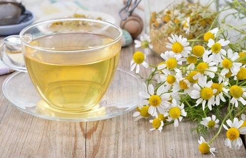O chá de camomila é uma das bebidas noturnas que desintoxicam o fígado