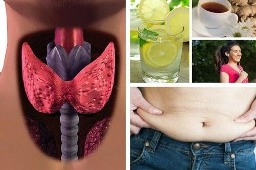Como perder peso quando se sofre de hipotiroidismo