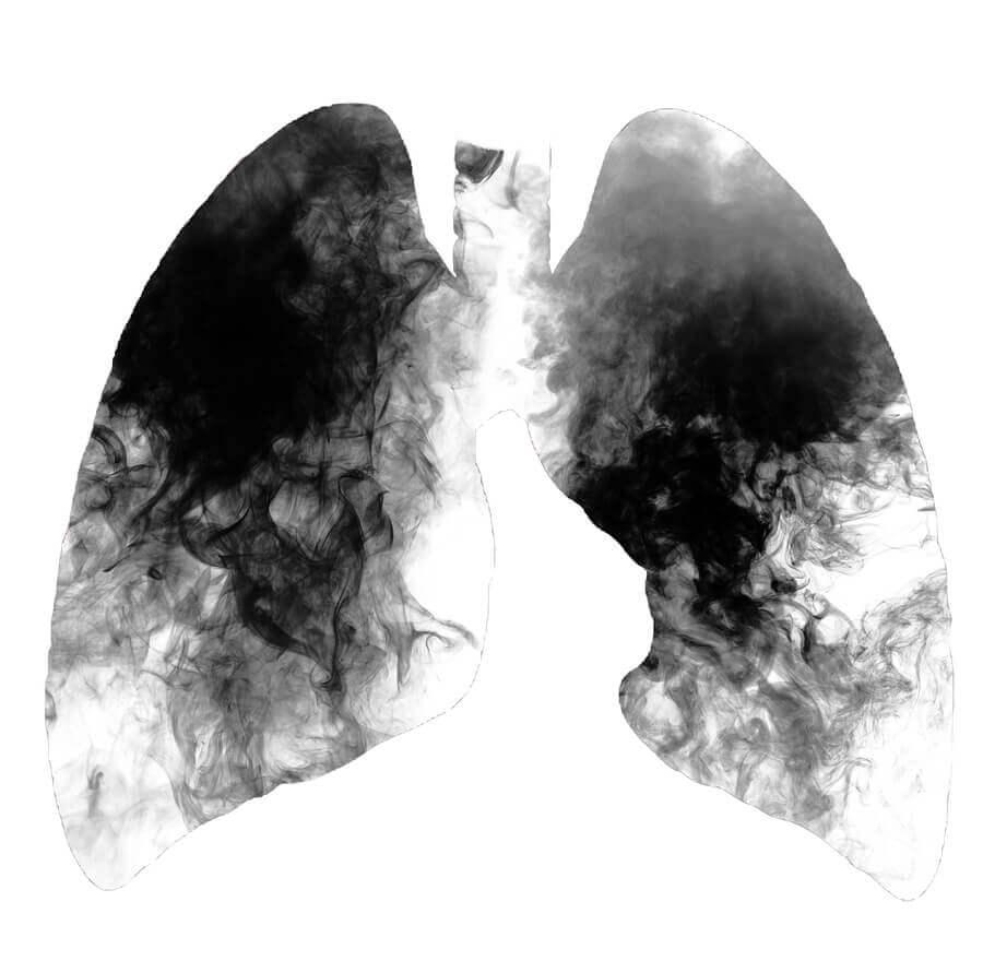 limpar pulmões