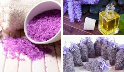 10 usos da lavanda em casa, na estética e na medicina