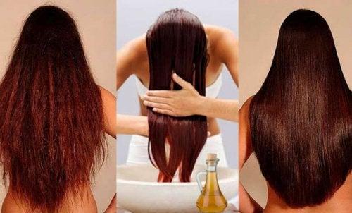 Quer fortalecer seu cabelo? Experimente este condicionador 100% natural