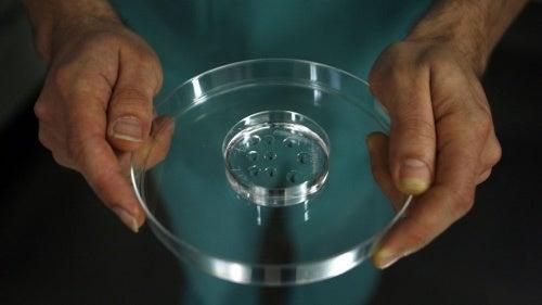 Fertilização in vitro livre de câncer de mama