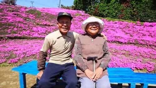 Um japonês plantou milhares de flores para que sua esposa cega sentisse seu aroma