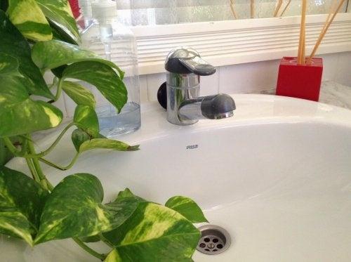 Como eliminar maus odores no encanamento