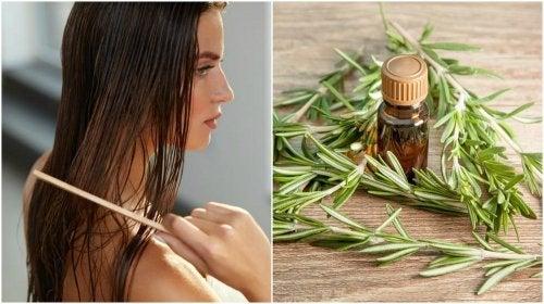 Óleo essencial para o cabelo