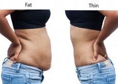 Alimentos queimadores de gordura