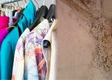 Tirar o cheiro de mofo das roupas