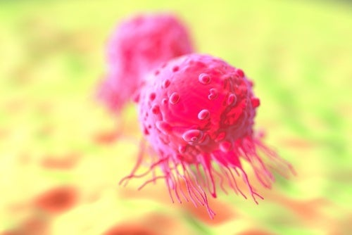 Celulas de câncer de mama