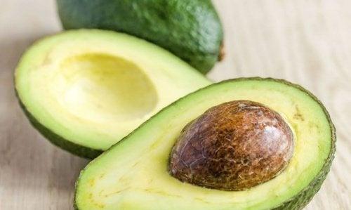 Passos para germinar uma semente de abacate
