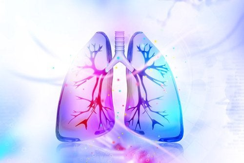 como_desintoxicar_os_pulmoes