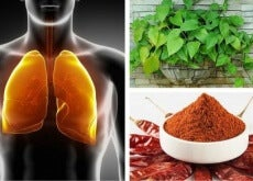 Como depurar os pulmões
