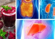 Como desintoxicar cada órgão vital