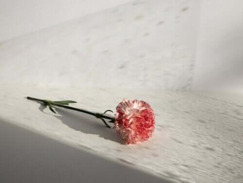 Se você amar, não traia. Se não sentir nada, não iluda