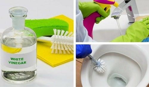 Limpar o banheiro com vinagre branco
