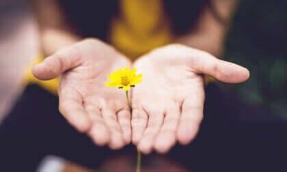 7 hábitos que você pode adotar para ser mais otimista