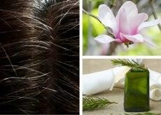 Tinturas naturais para cabelos brancos
