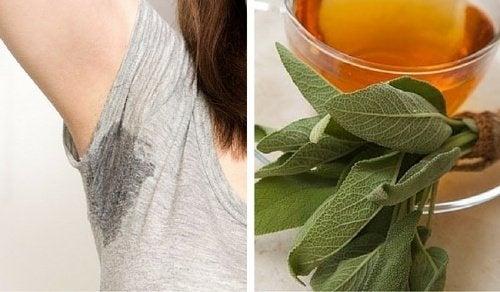 6 remédios caseiros que ajudam a controlar o suor