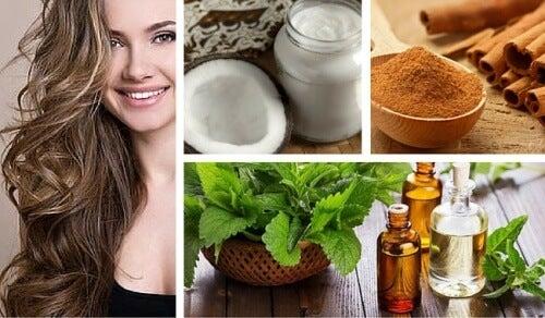 Remédio de coco, menta e canela para estimular o cabelo