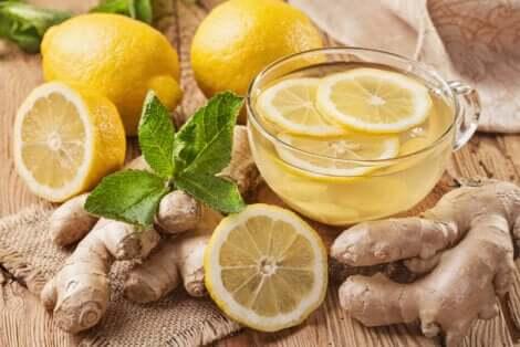 Infusões de limão e gengibre para as vias respiratórias
