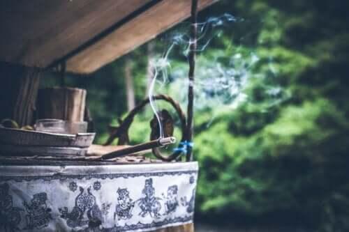 6 remédios caseiros para manter os insetos longe de casa
