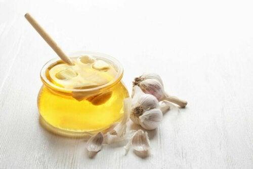 Remédio de mel e alho para cuidar do fígado
