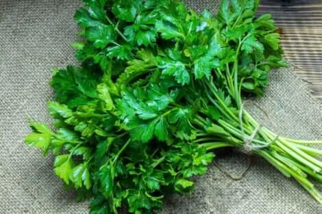 Além de seu uso como tempero a salsinha possui propriedades benéficas para a saúde