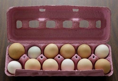Evitar o desperdício de ovos