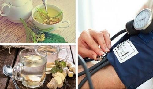 Pressão baixa? Conheça 6 remédios naturais que podem ajudar a aliviar este mal