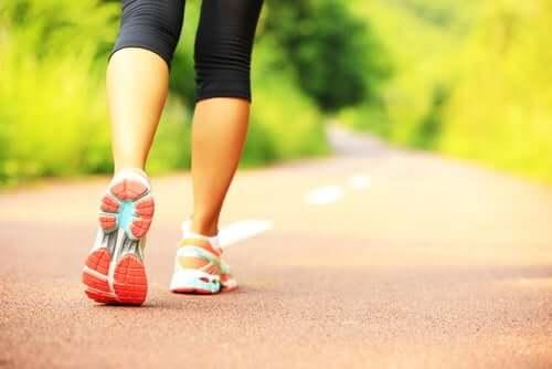 Cuidar da tireoide e da imunidade