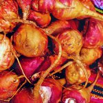 A maca peruana, uma maravilha para as mulheres
