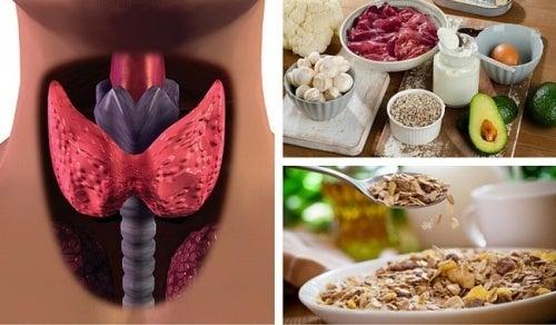 Como combater o hipotireoidismo com alimentos que aceleram o metabolismo