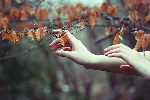 Folhas de outono que representam uma pessoa que não melhora