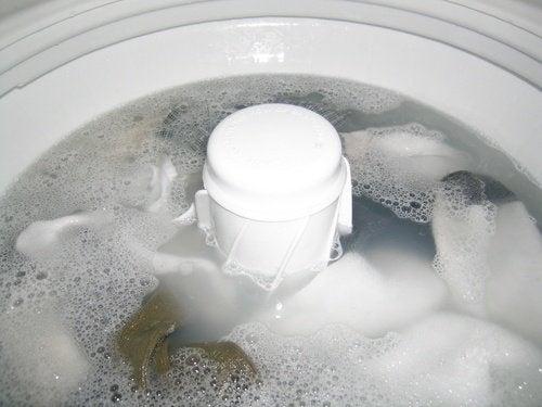 Eliminar o mofo da máquina de lavar