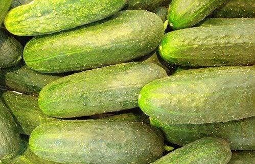 Os benefícios de consumir pepino