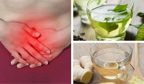 As 8 melhores infusões contra os gases intestinais