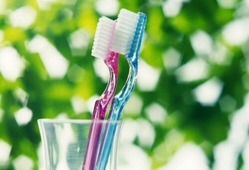 Escovar os dentes corretamente para não causar dor nos dentes
