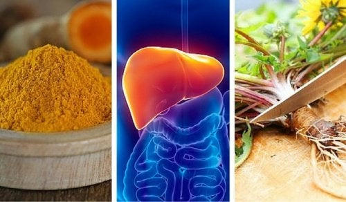 Essas são as 6 melhores ervas para proteger o fígado