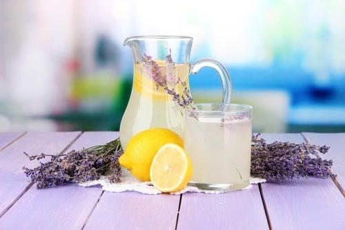 Limonada de lavanda com a planta para cefaleias