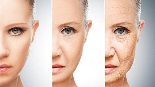 Mudanças nos hábitos alimentares aos 30, 40, 50 e 60 anos