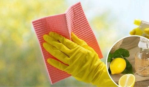 Dicas para limpar as janelas da casa