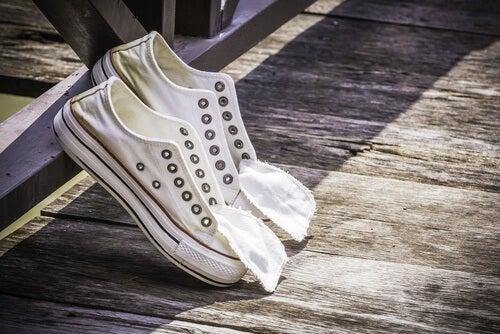 cebola-limpar-sapatos