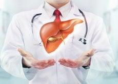 5 conselhos para proteger o fígado do dano causado pelo álcool